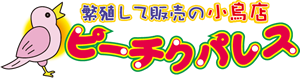 佐賀県の繁殖して販売の小鳥店ピーチクパレス